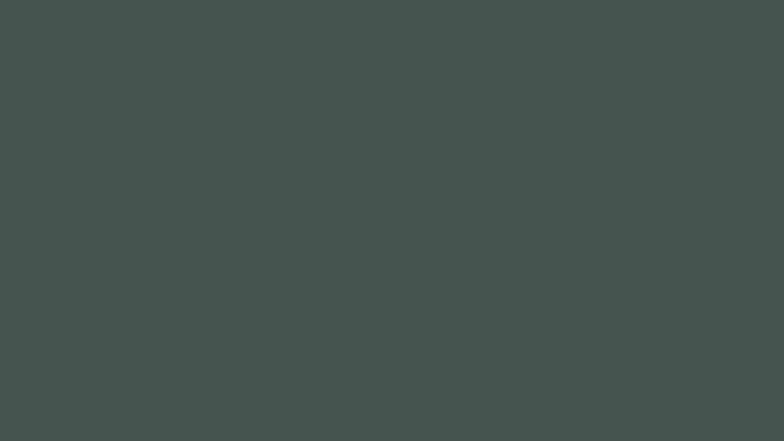 Лента ABS 116 Матовая 27х1мм, Grigio Piombo (темно-серый)