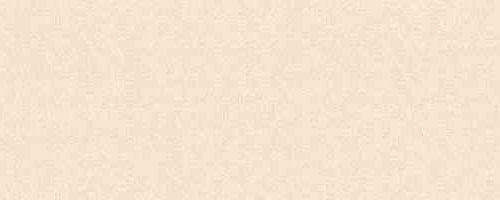 Лента ABS Жемчужно-бежевая  31х2  ST15  75