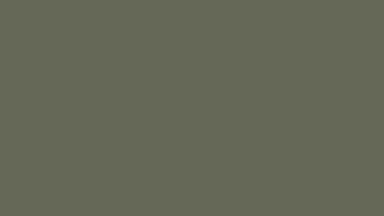 Плита ДСП Акрил 055 Cammello 2800х1300х18.8, 2-сторонн. (верблюжий)